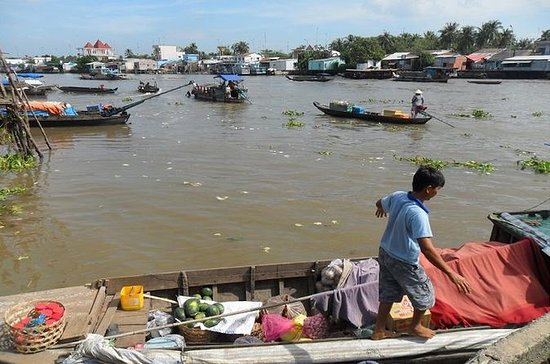Day Trip to Mekong Delta from Ho Chi