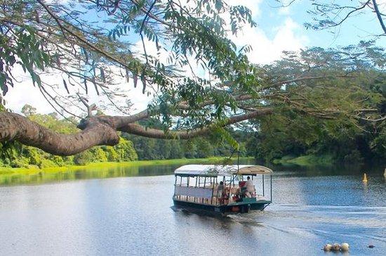 Kuranda Barron River Riverboat Nature