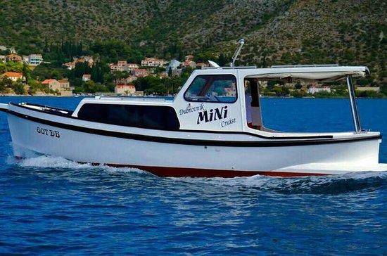 Visite privée en bateau d'une journée...