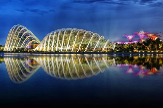 Billett til Gardens By The Bay med...