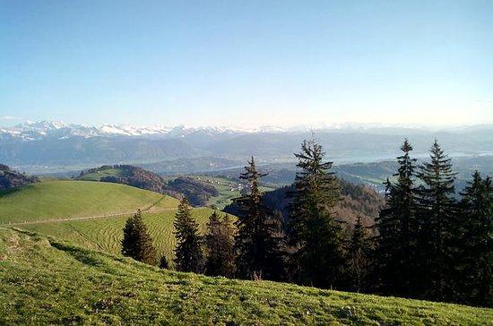 Excursion de 4heures en quad à Zurich