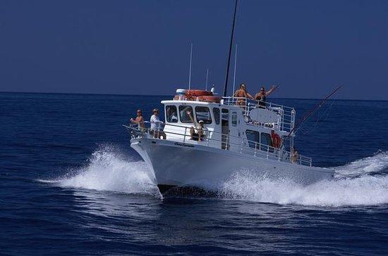 Kona Sport-Fishing Large Group...