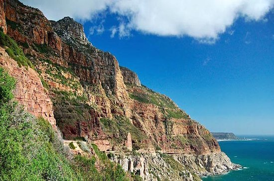 Full-Day Best of Cape Town Private