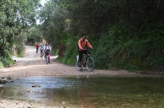 Small-Group Adventure: Cycling in Ria...
