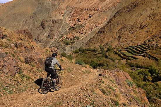 Full-Day Mountain Biking in the Atlas...