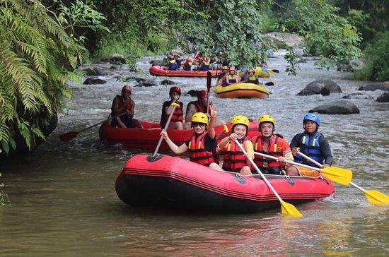 Aventure de rafting à Bali, sur la...