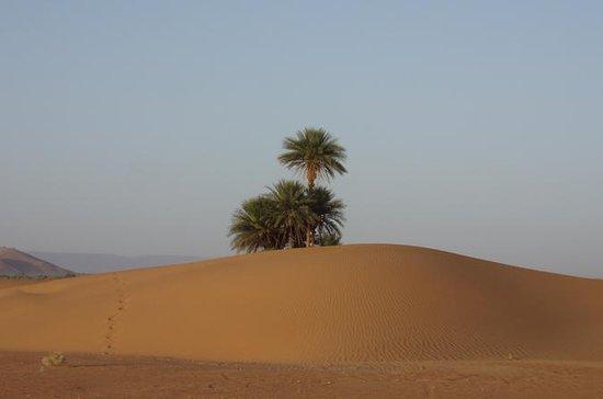 2-tägige Privattour in der Wüste von...