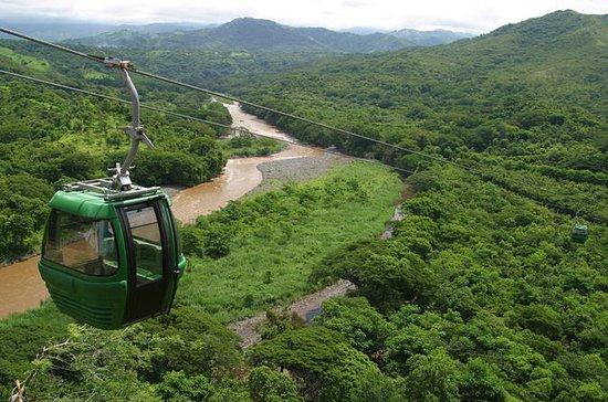 Turubari Eco Park et Rainforest...