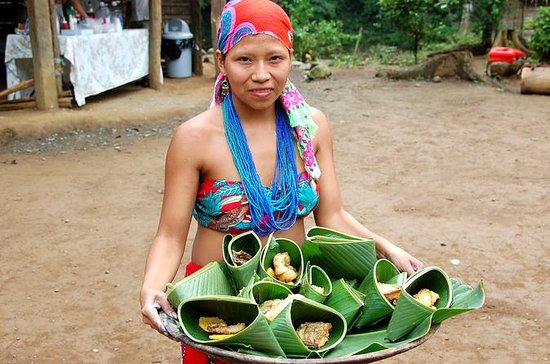 Authentic Embera Indian Village Tour