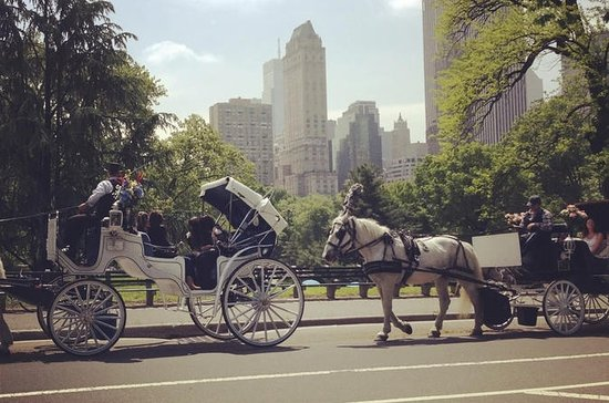Central Park Horse Carriage Ride with...