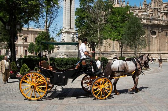 Private Horse Carriage Ride and...