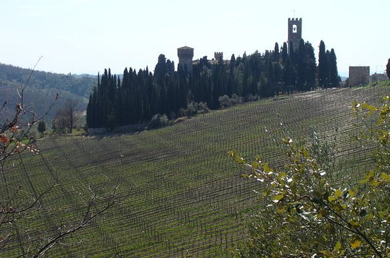 Florence Day Trip to Chianti and San...