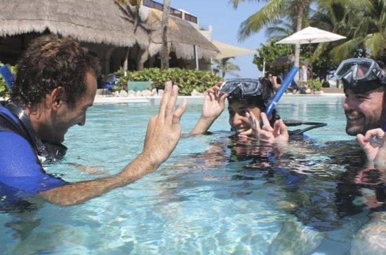 Riviera Maya PADI Open Water Diving...