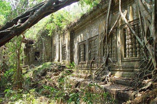 Tour privato a Beng Mealea Jungle