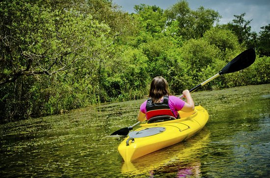 Kayaking on Broad River with Wine...