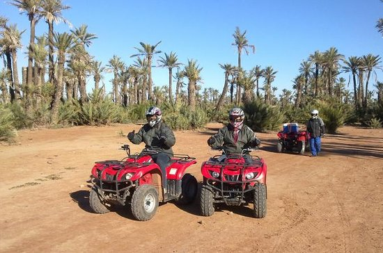 Full-Day Camel Riding with Quad Bike...