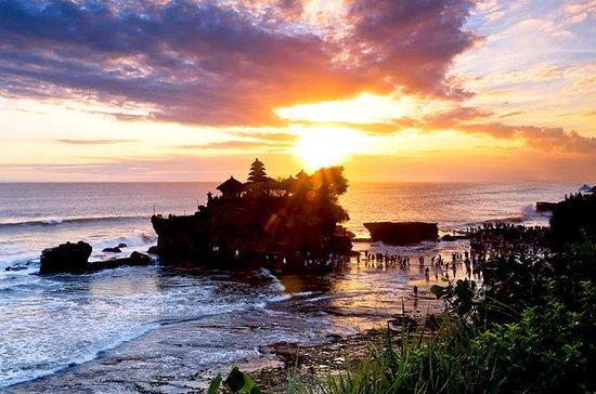 Private Tour: Tagesausflug nach Ubud...