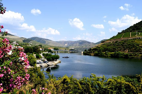 Douro Valley Small-Group Tour with...