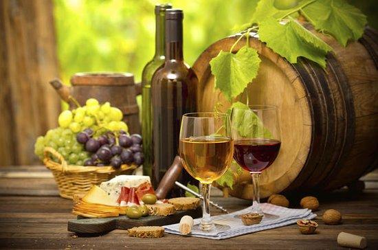 Recorrido vinícola por la región de...