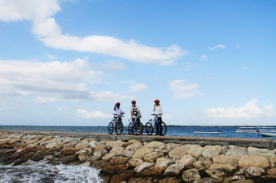 Cycle Tour of Sanur Village with...