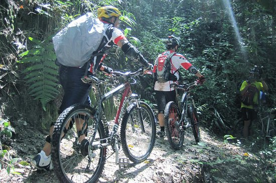 Full-Day Advanced XC  Downhill Biking...