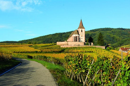 Alsace Full Day Wine Tour from Colmar