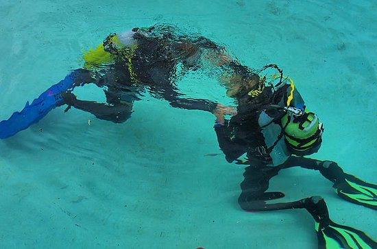 Discover Scuba Diving in Playa del ...