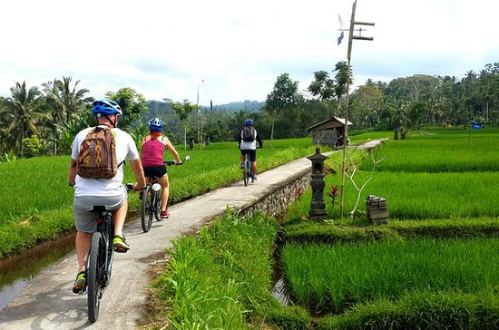 Halv-dages Electric Bike Tour of Ubud
