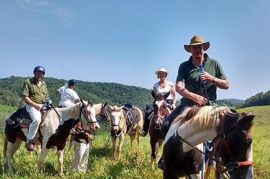 Cabalgata en una granja ecuestre en...
