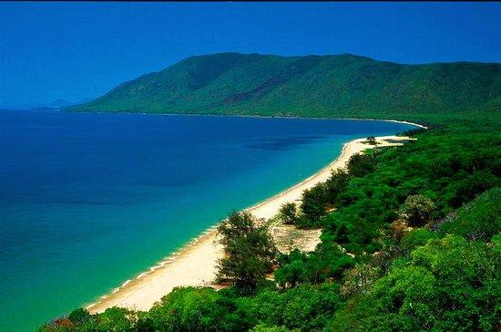 Cairns Reef och Rainforest Combo ...