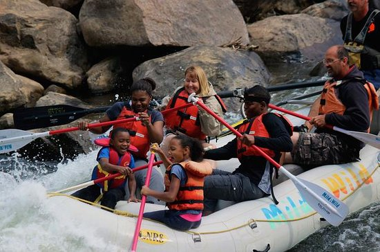Half-Day Family Rafting i Durango