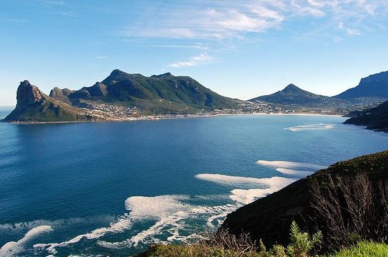 Full-Day Cape Peninsula and Cape of...