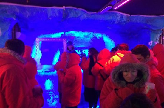 Argentinian Ice Bar, Wine and Dinner Experience