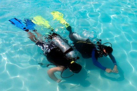Programma di immersione della PADI a