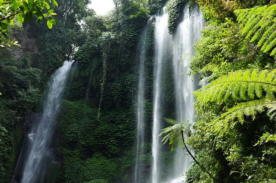 Private Tour: Sekumpul Waterfalls ...
