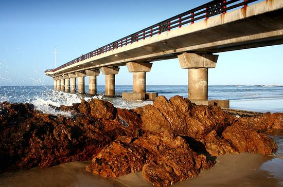 Port Elizabeth Shore Excursion: Half...