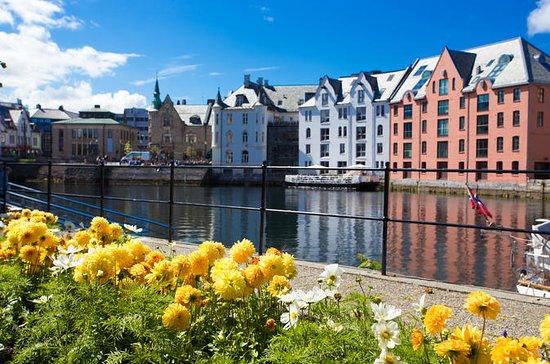 Excursión por la costa de Alesund...