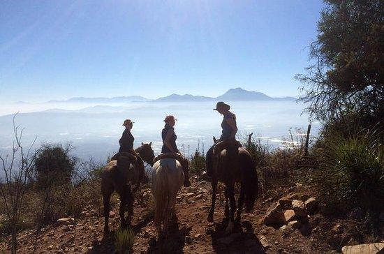 2-daagse paardrijden in de heuvels