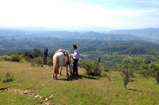 Horseback Ride with Barbecue in the...