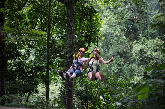 Jungle Ziplining Adventure from