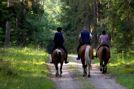2-Day Horse Riding Tour in Sredna...