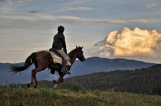 Équitation de deux jours dans les...