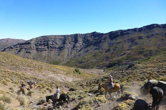 サンティアゴからの5日間の乗馬遠征