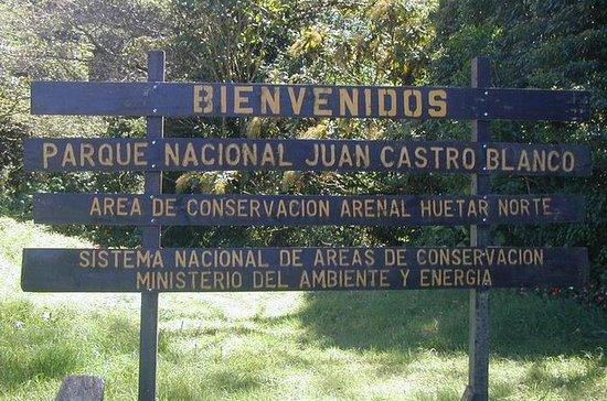 Observation des oiseaux au parc...
