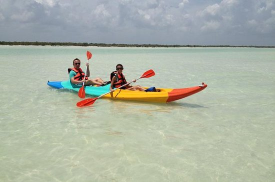 Kayaking Tour Through the Mangroves...