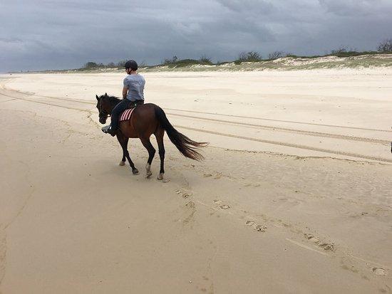 Tassiriki Ranch Beach Horse Riding & Holiday Cabins- Day Tours: photo2.jpg