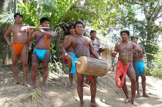 Recorrido por la aldea indígena de...
