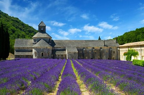 Small-Group Highlights of Provence...