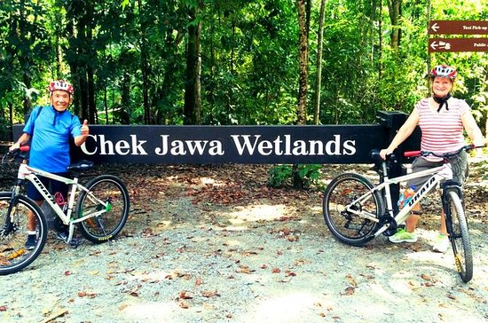 Half-Day Pulau Ubin Bike Tour from