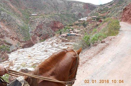 Passeio a cavalo em Cusco: Vale...